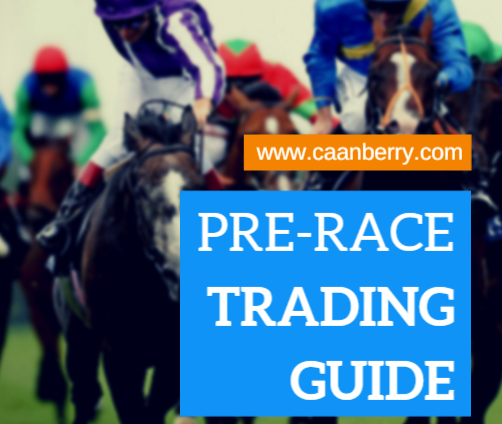 Betfair Trading Courses