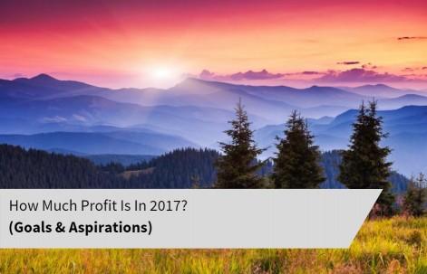 Profit 2017