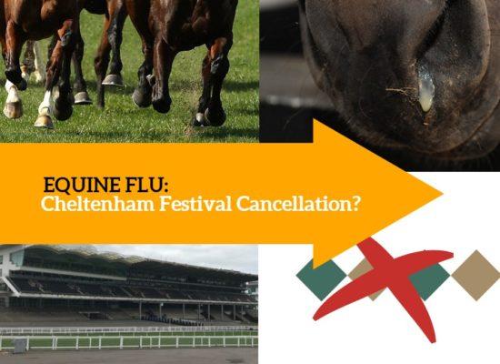 equine flu