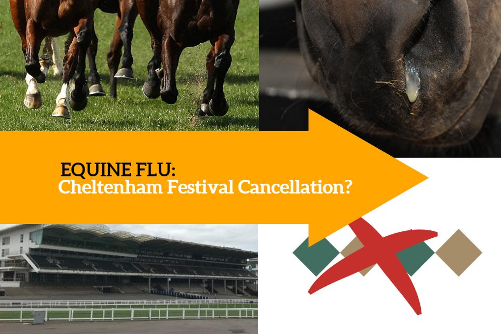 Equine Flu: Equine Flu: Cheltenham Festival Cancellation?