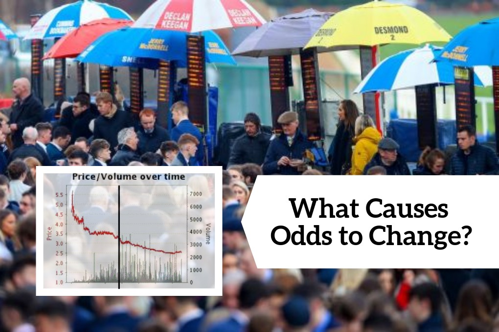 Horse betting odds change mining bitcoins deutsch