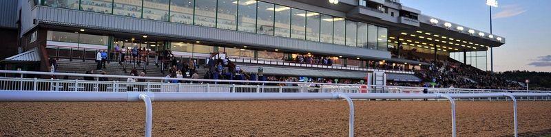 Wolverhampton AW Course